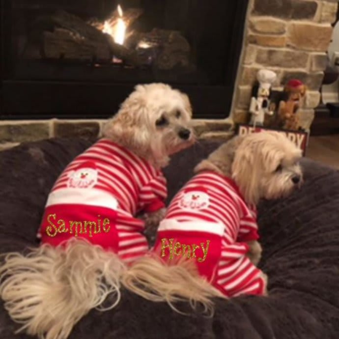 Christmas Pajamas For Dog.Christmas Dog Pajamas