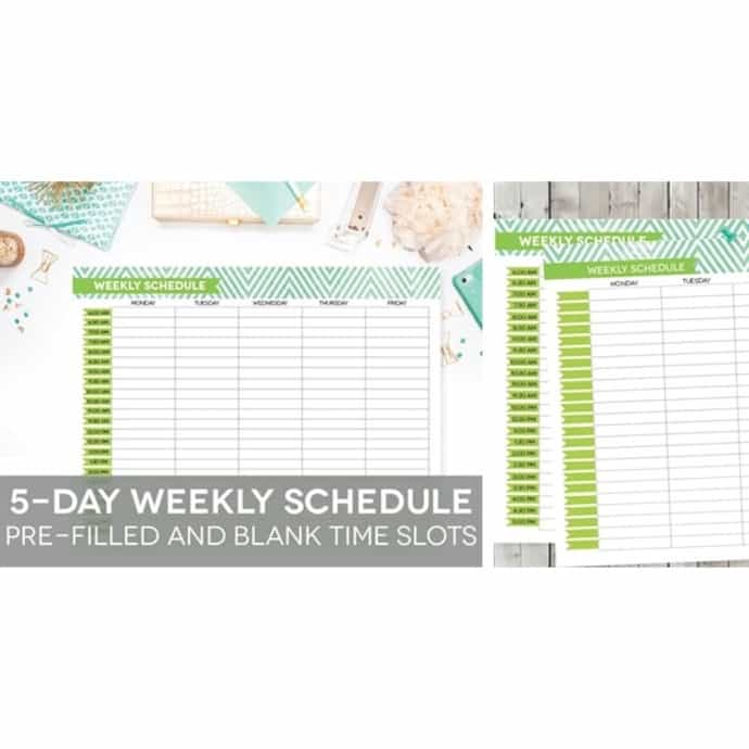 photograph regarding Hourly Planner Printable known as Weekly Program Printable, Editable 5-Working day 50 %-Hourly Planner Electronic