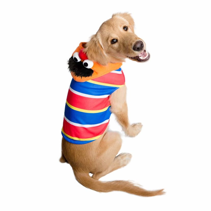 Sesame Street Dog And Cat Costumes Free Shipping