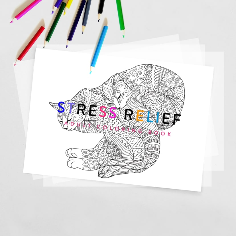 Adult Coloring Book Stress Relief Digital Download Jane