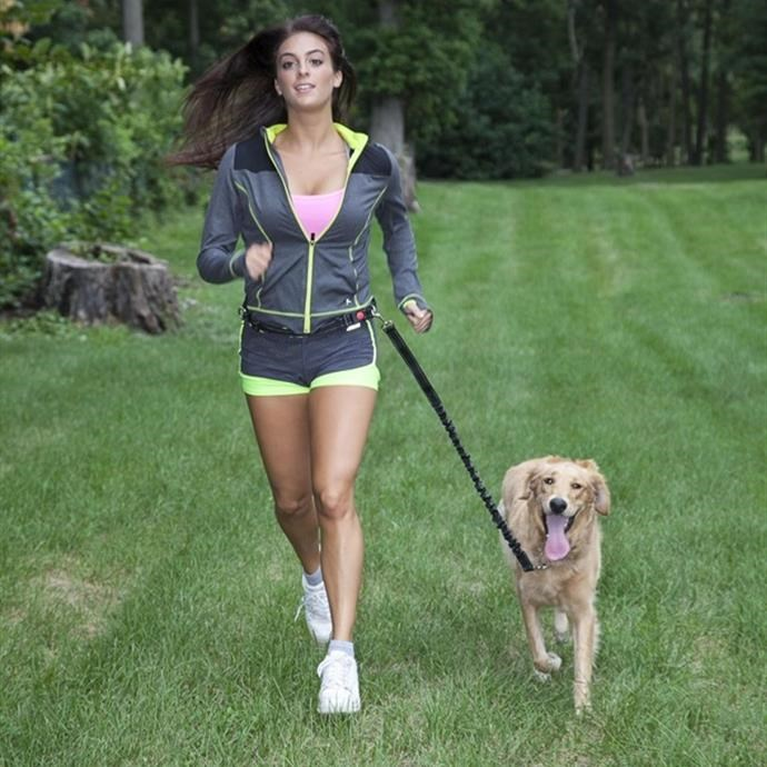 Hands-Free Running Dog Leash $10.99 Shipped (Was $30)