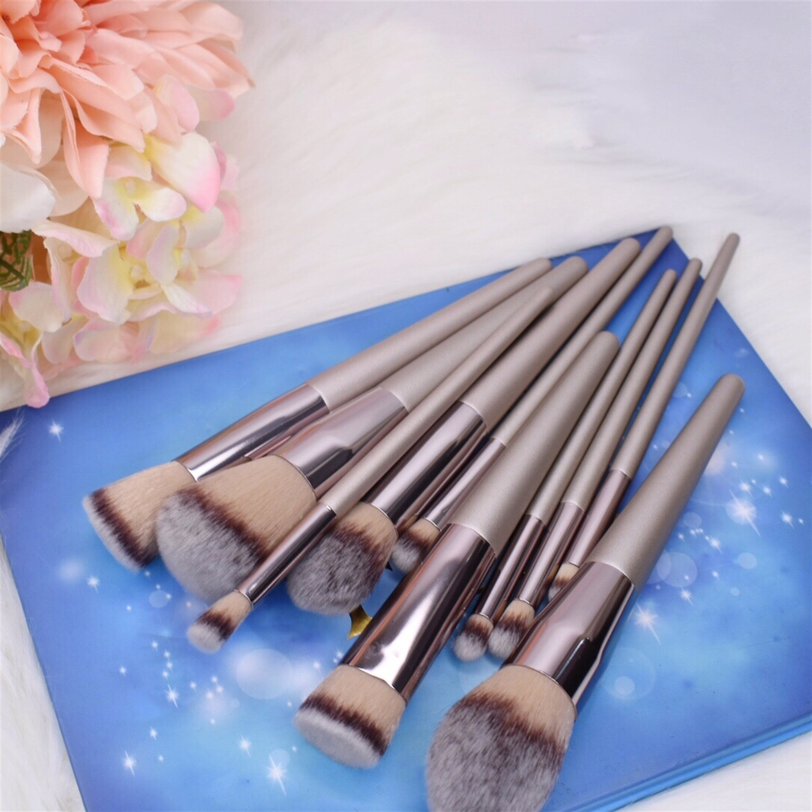 Professional Makeup Brushes / Set of 10